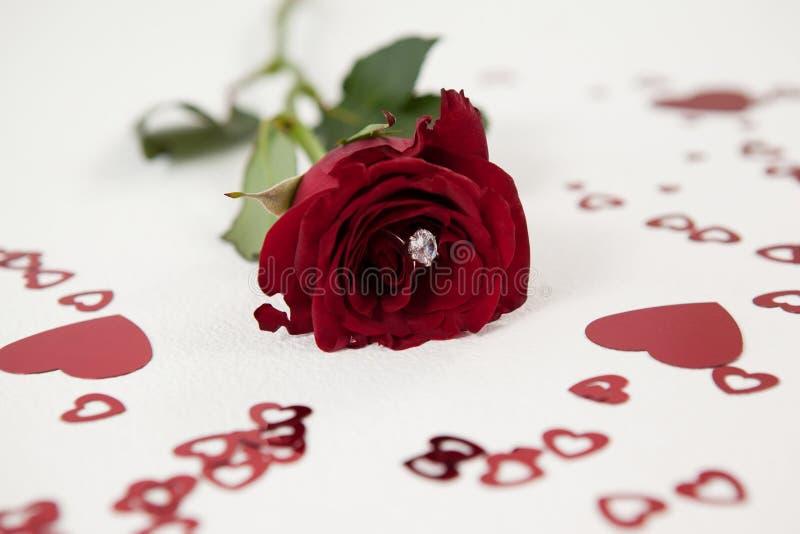 Rosa do vermelho com um anel de diamante cercado pela decoração coração-dada forma imagem de stock royalty free