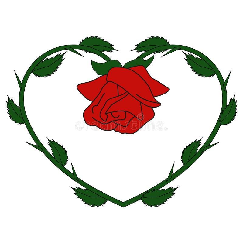 Rosa do vermelho do ícone na forma do coração no fundo branco molde para m ilustração stock