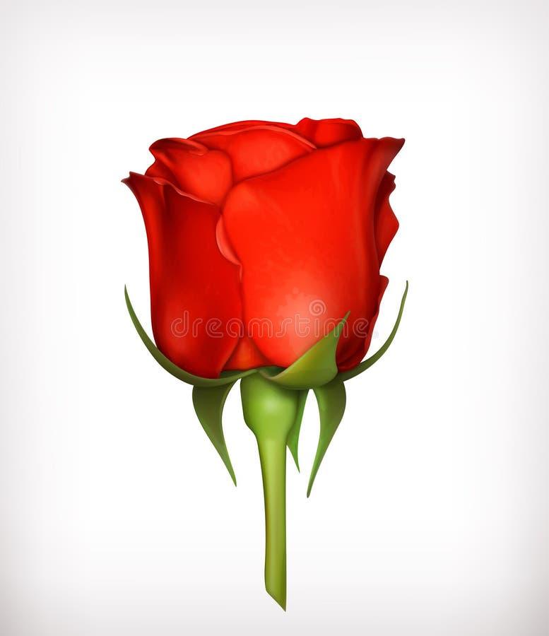 Rosa do vermelho ilustração stock