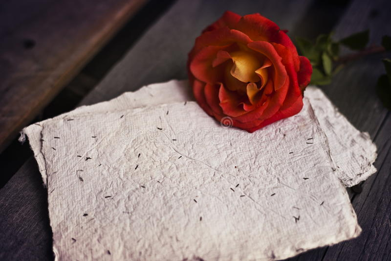 Rosa do vermelho no fundo rústico de madeira com papel imagem de stock