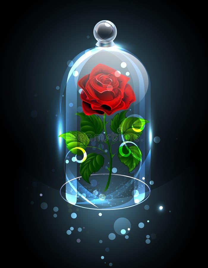 Rosa do vermelho sob a abóbada de cristal ilustração royalty free