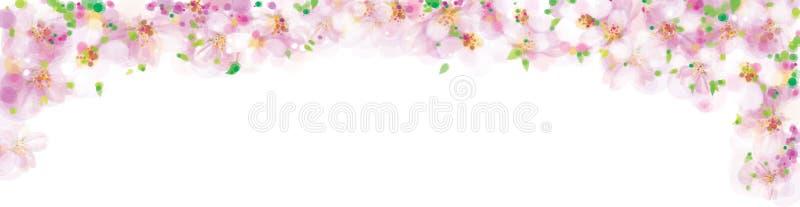 Rosa do vetor, beira floral, árvore de florescência de sakura ilustração royalty free