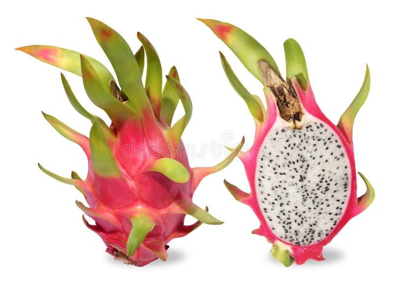 Rosa drakefrukt Fruitagen av kaktuns är tropisk frukt fotografering för bildbyråer