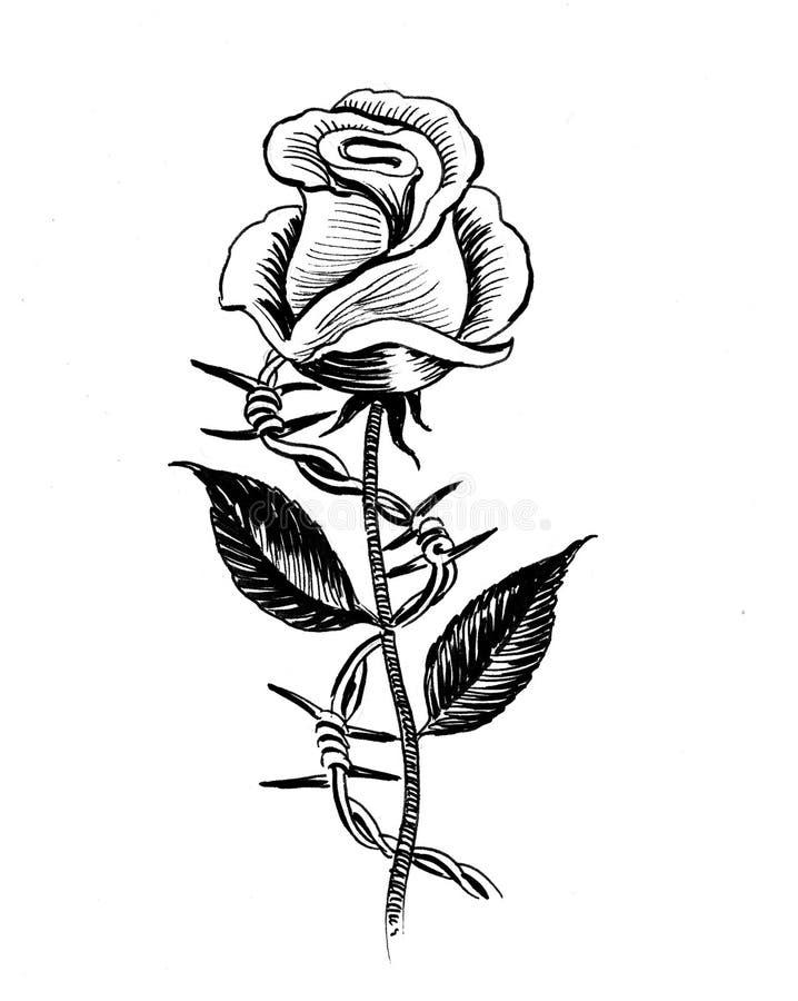 Rosa e arame farpado ilustração do vetor
