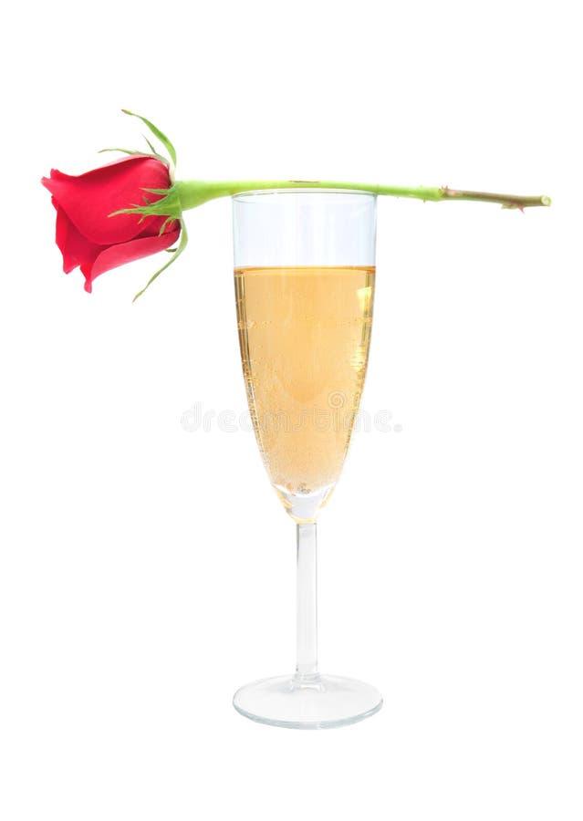 Rosa e champanhe do vermelho foto de stock royalty free