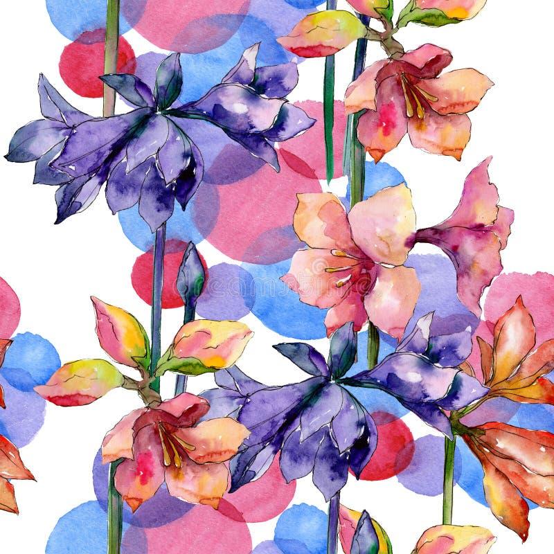 Rosa e fiore botanico floreale dell'amarillide porpora Insieme dell'illustrazione del fondo dell'acquerello Modello senza cucitur illustrazione vettoriale