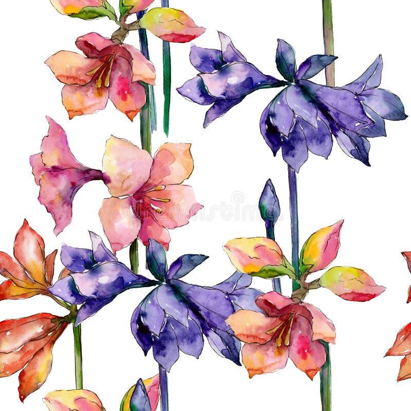 Rosa e fiore botanico floreale dell'amarillide porpora Insieme dell'illustrazione del fondo dell'acquerello Modello senza cucitur royalty illustrazione gratis