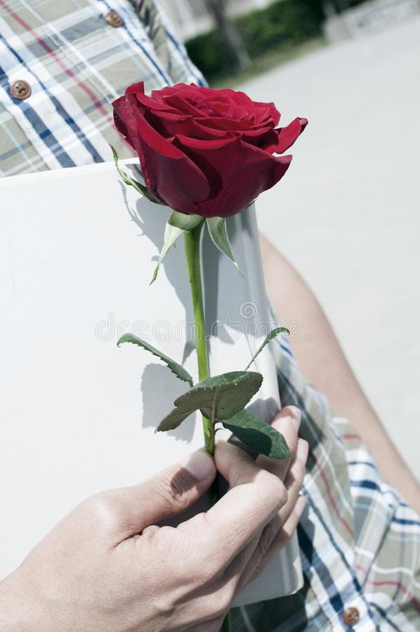 Rosa e livro do vermelho para Saint George Day fotos de stock royalty free