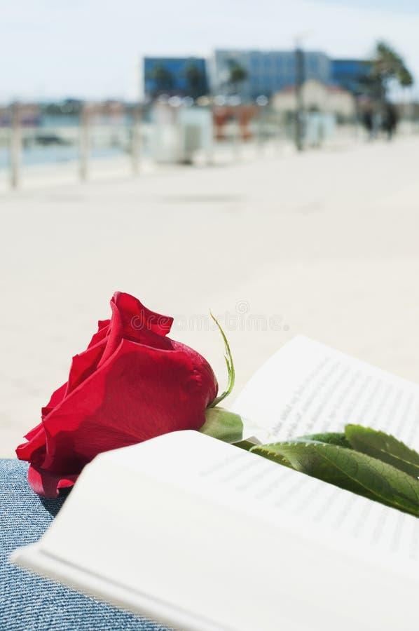 Rosa e livro do vermelho para Saint George Day imagens de stock royalty free