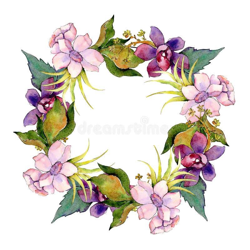 Rosa e mazzo botanico floreale porpora del fiore Insieme dell'illustrazione del fondo dell'acquerello Quadrato dell'ornamento del illustrazione di stock