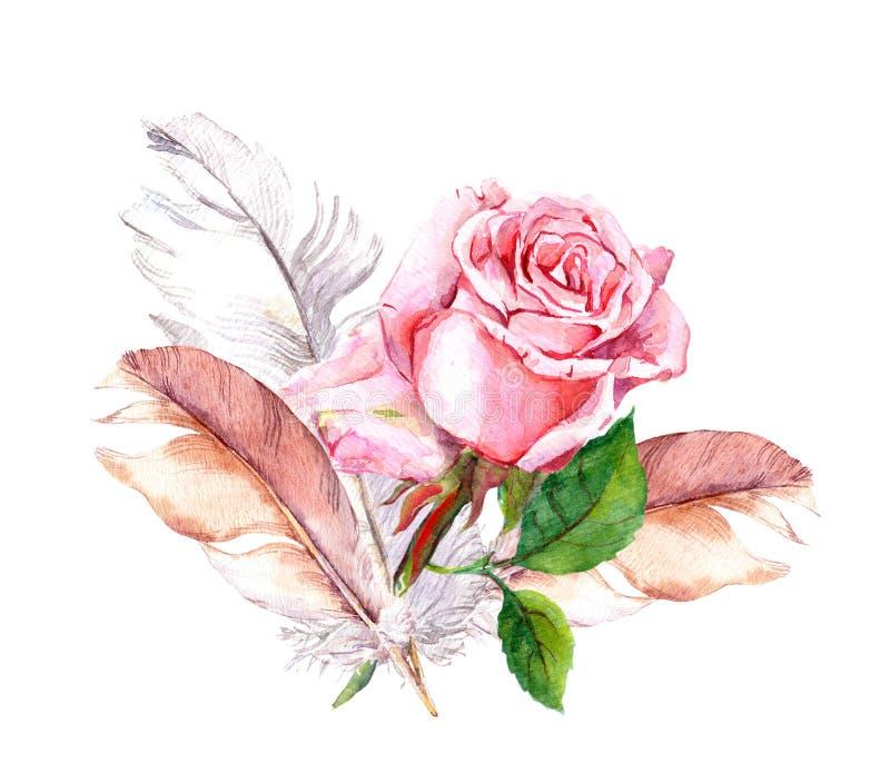 Rosa e penas watercolor ilustração royalty free
