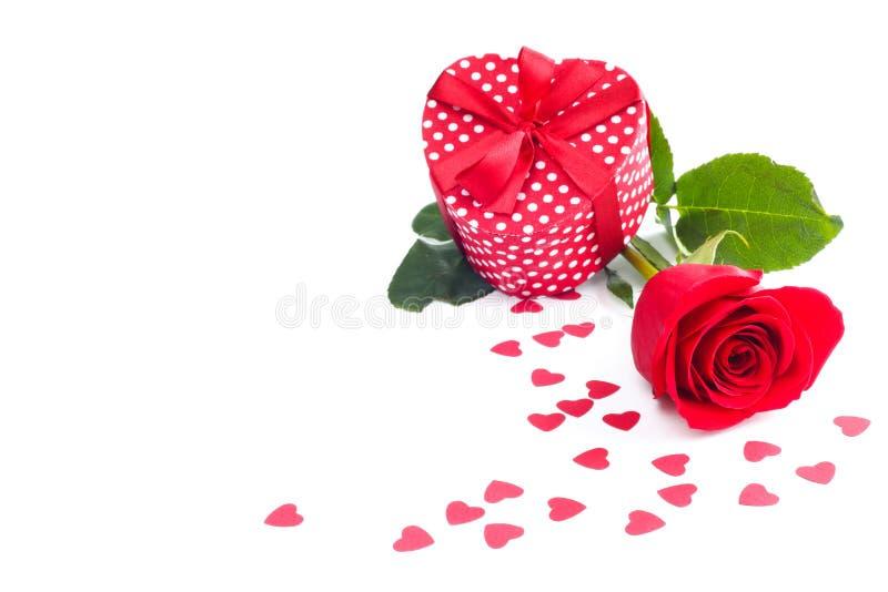 Rosa e regalo su bianco fotografia stock