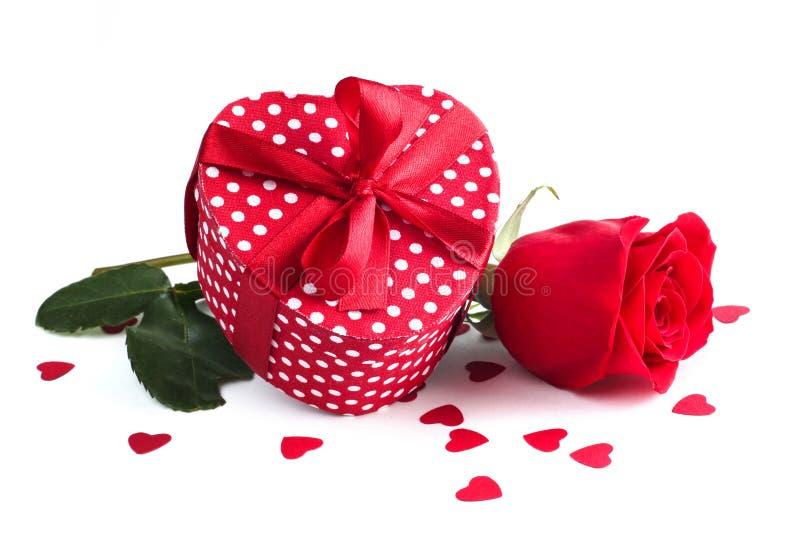 Rosa e regalo su bianco immagini stock