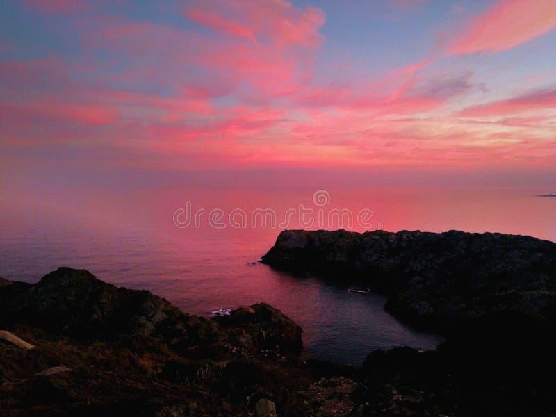 Rosa färg landskap royaltyfria bilder
