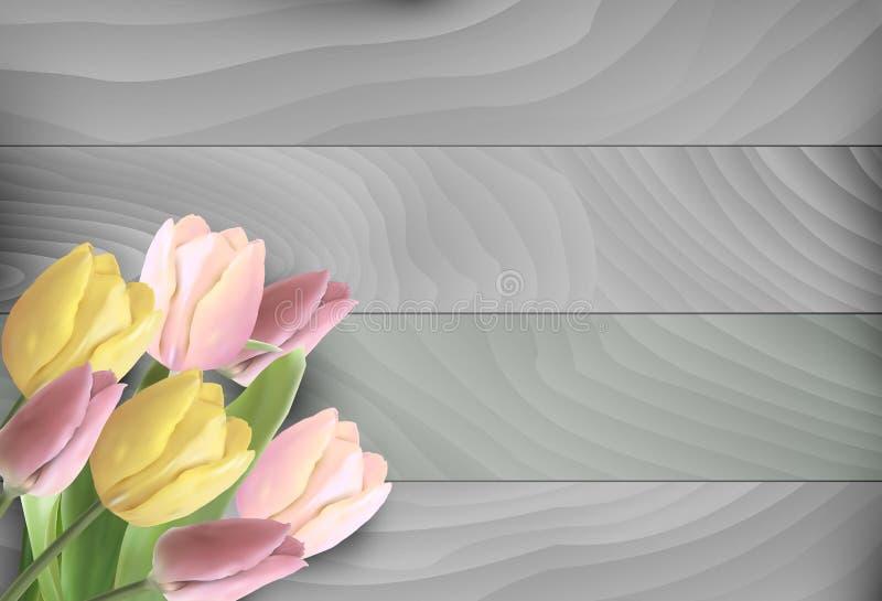Rosa färg- och gulingtulpan vektor illustrationer