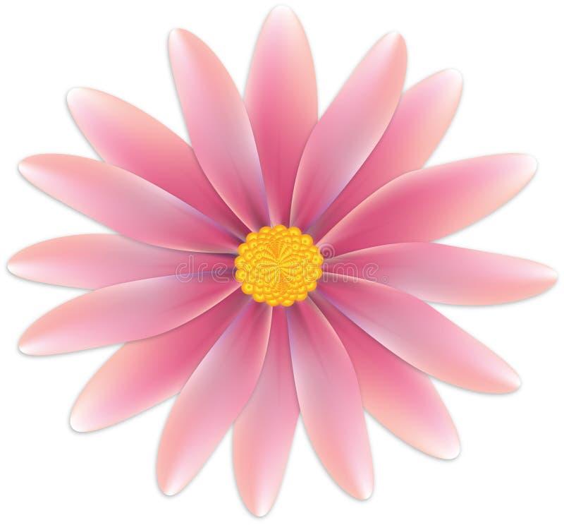 Download Rosa färgblomma stock illustrationer. Illustration av målning - 37344435