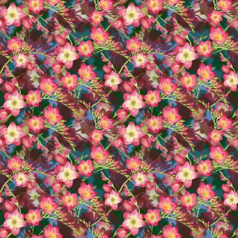 Rosa färgen blommar freesia, den härliga bukettfilialen på en röd bakgrund, sömlös illustration för vändkretsmodellvattenfärg vektor illustrationer