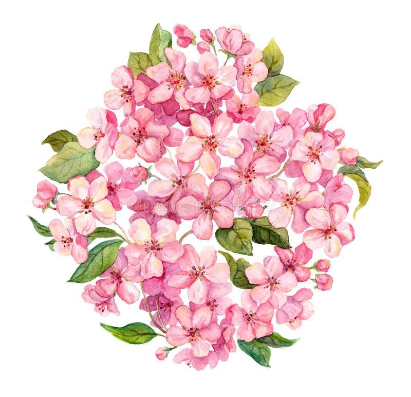 Rosa färger fjädrar blommor - sakura, äppleblommor blomstrar vattenfärg royaltyfri illustrationer