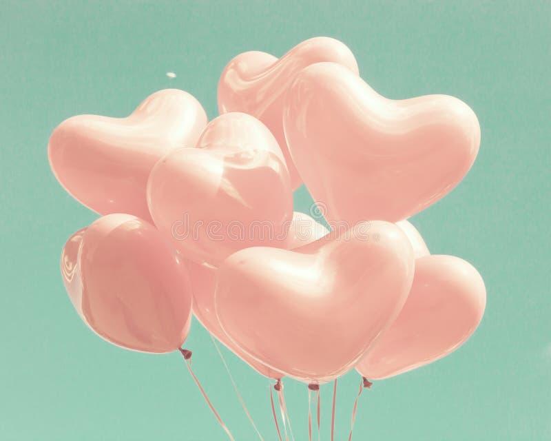 Rosa färger Hjärta-formade ballonger royaltyfri foto