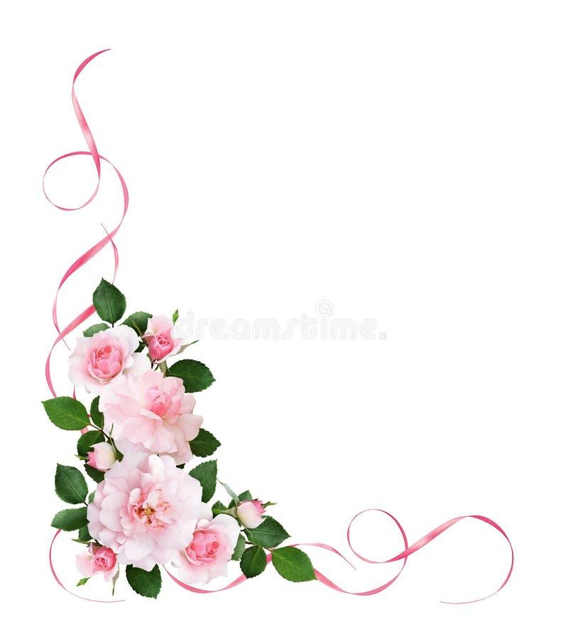 Rosa färger steg blommor och satängband i en blom- hörnarrangeme vektor illustrationer