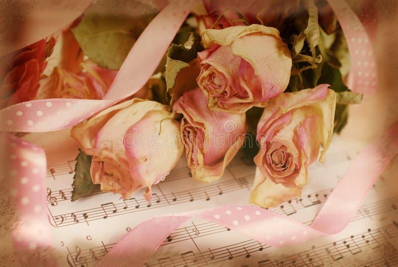 Rosa färger torkade rosor på gammalt anmärkningspapper i tappningstil royaltyfria foton
