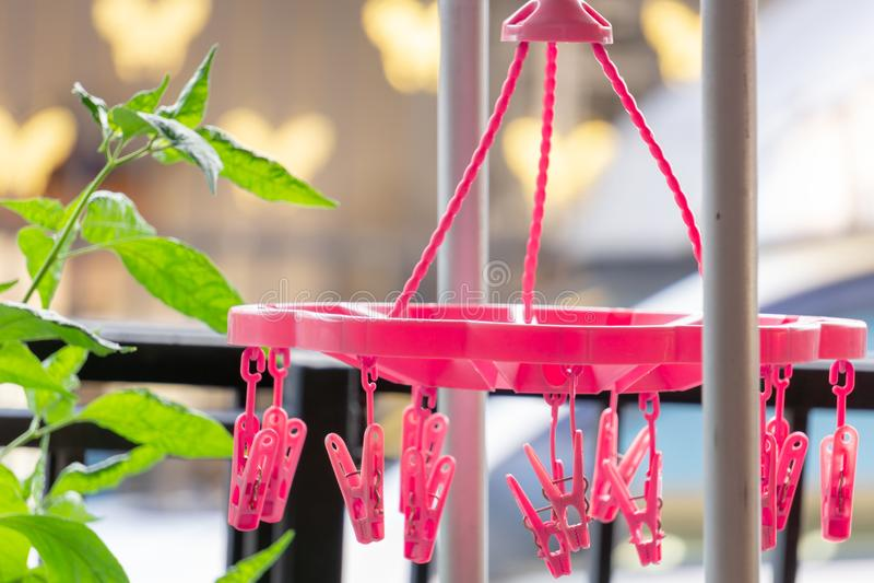 Rosa färgklämmor för soluttorkning, kläder som hänger gemet, soluttorkningunde arkivfoton