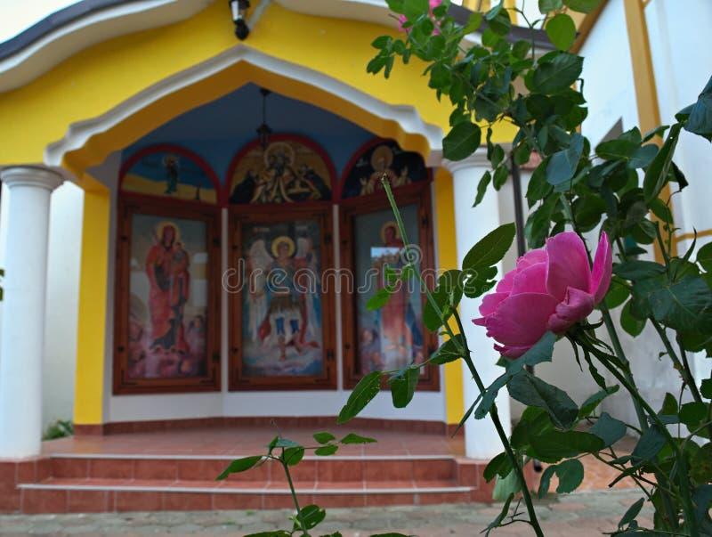 Rosa färgros framme av det lilla öppna kapellet i kloster royaltyfria bilder