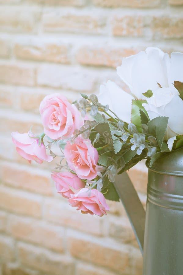 Rosa färgros i metallvas royaltyfri fotografi