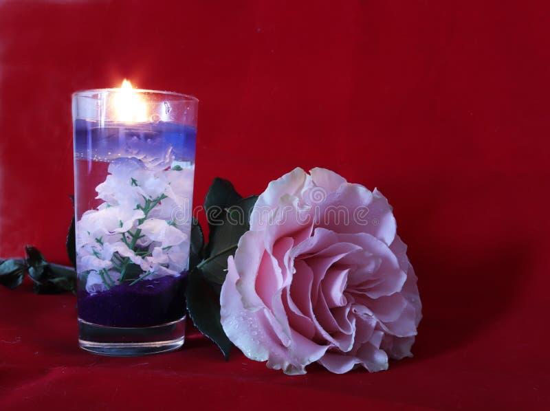 Rosa färgros och stearinljus på röd sammetbakgrund fotografering för bildbyråer