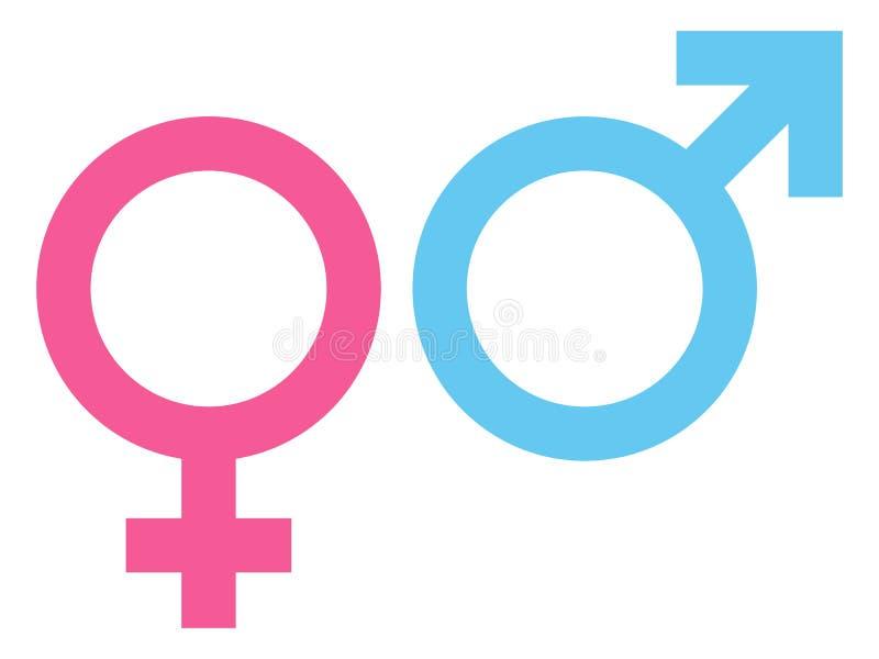 Rosa fêmea e masculino do ícone e azul ilustração royalty free