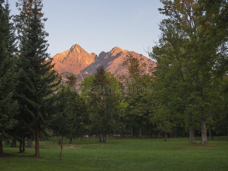 Rosa för Tatra bergområde färgat och orange soluppgångljus, sikt från Tatranska Lomnice med gröna träd och gräs höst tidigt royaltyfri fotografi