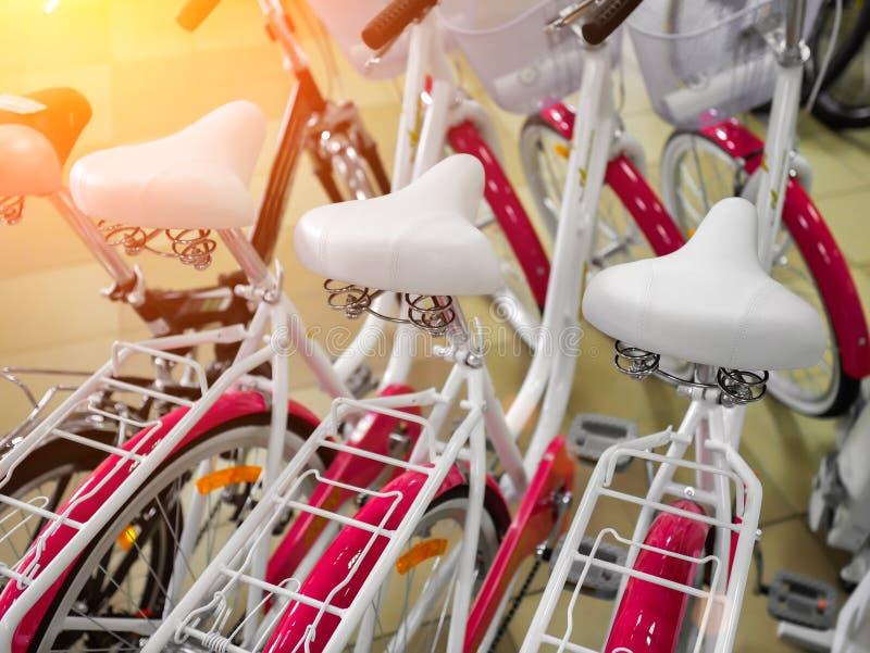 Rosa Fahrräder, Fahrradgeschäftsnahaufnahme lizenzfreies stockfoto