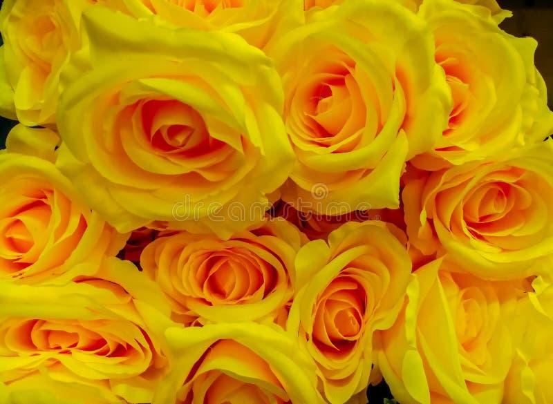 Rosa fiore fiore mazzo mazzo di fiori petalo for Disegni del mazzo del secondo piano