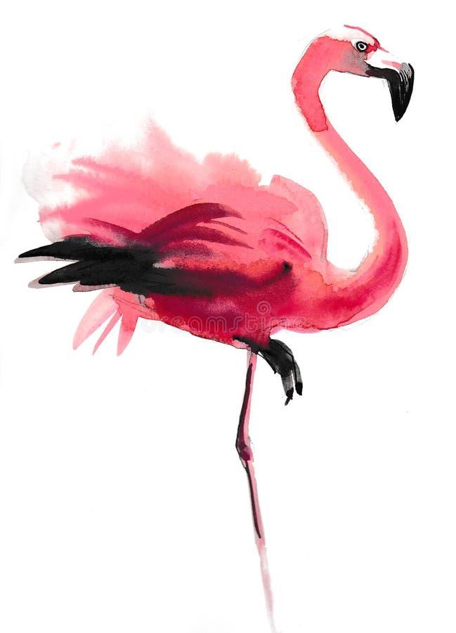 Rosa Flamingo royaltyfri illustrationer