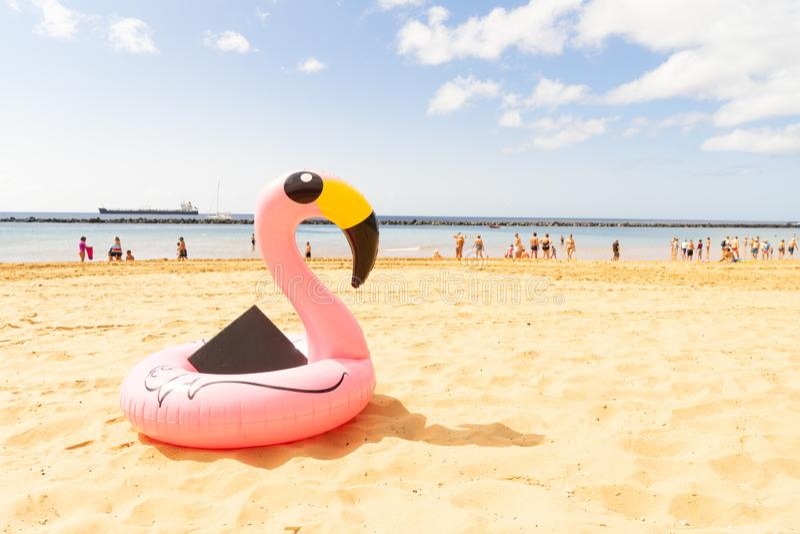 Rosa Flamingo auf Strand lizenzfreie stockbilder