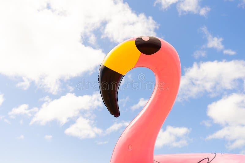 Rosa Flamingo auf Strand stockbilder