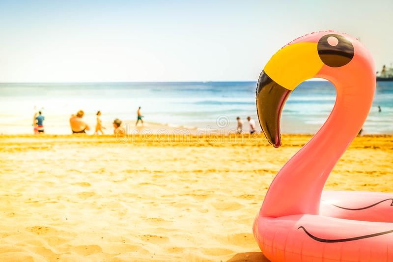 Rosa Flamingo auf Strand lizenzfreies stockbild