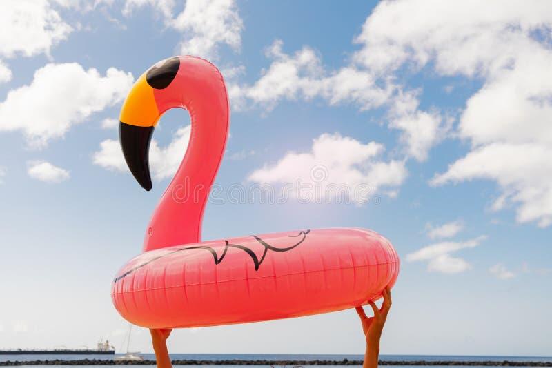 Rosa Flamingo auf Strand lizenzfreies stockfoto