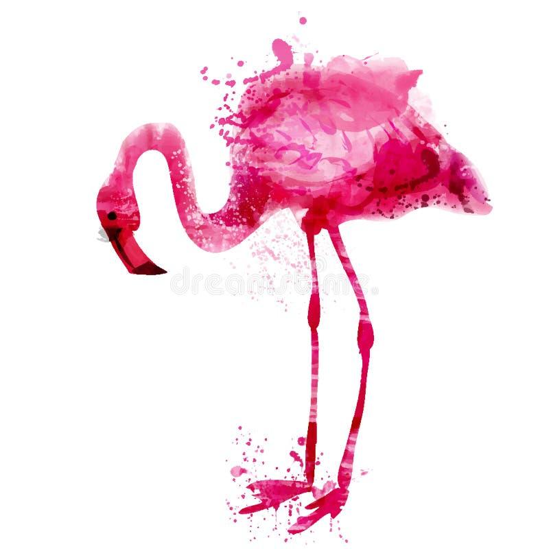 Rosa flamingo för vektorvattenfärg i färgstänk stock illustrationer