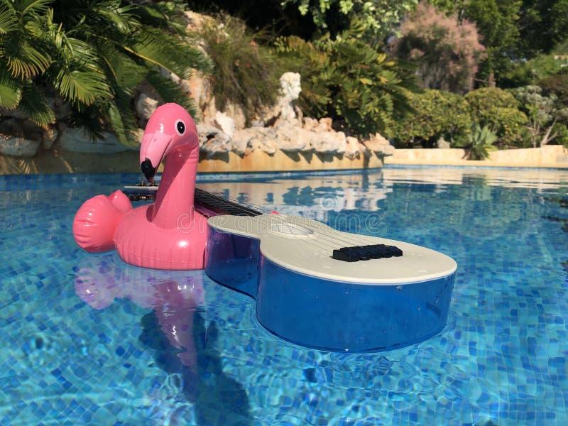 Rosa flamingo och ukulele i simbassäng fotografering för bildbyråer