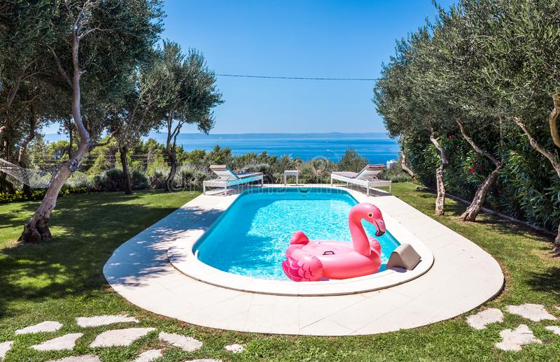 Rosa Flamingo waterbed im Swimmingpool stockbild
