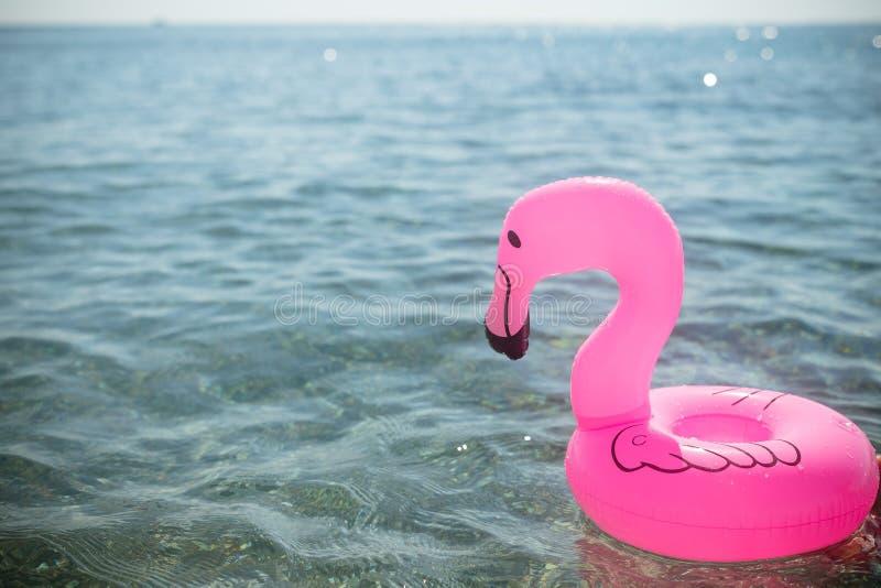 Rosa flamingouppblåsbar på bakgrunden av havet ha gyckel i pölen eller i havet på en uppblåsbar rosa flamingo in arkivfoton