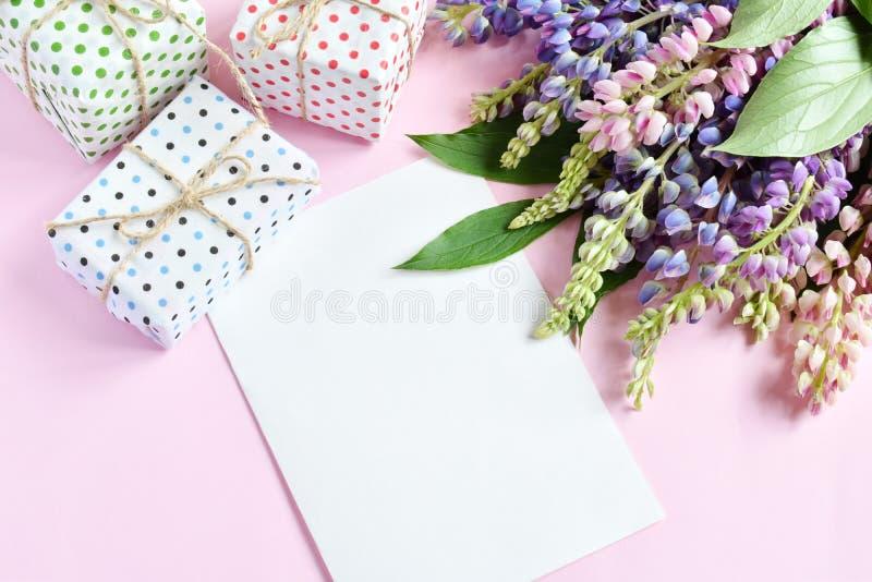 Rosa, flores lupine p?rpuras, regalos y hoja de papel vac?a en fondo rosado Cumplea?os, el d?a de madre, el d?a de tarjeta del d? fotos de archivo