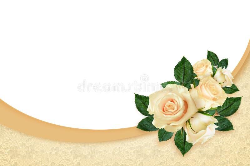 Rosa floresce a composição ilustração royalty free