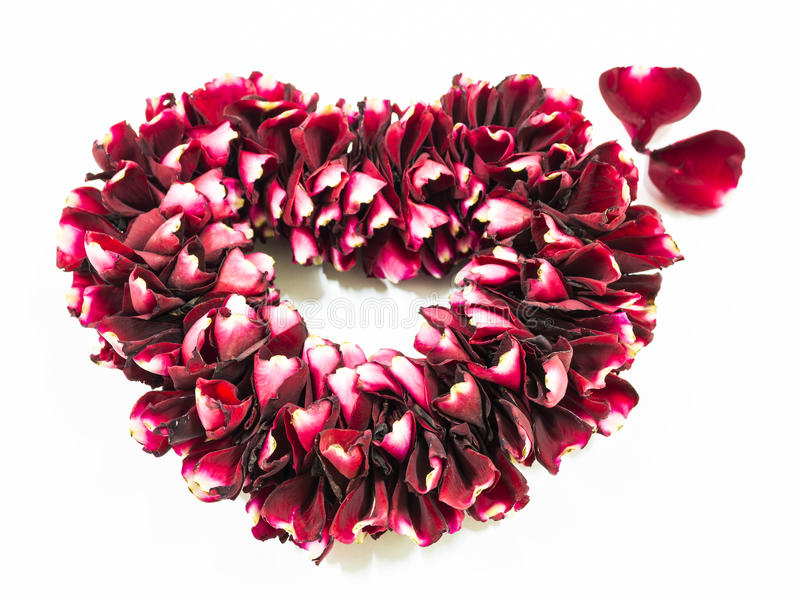 Rosa floresce o coração sobre o branco imagem de stock
