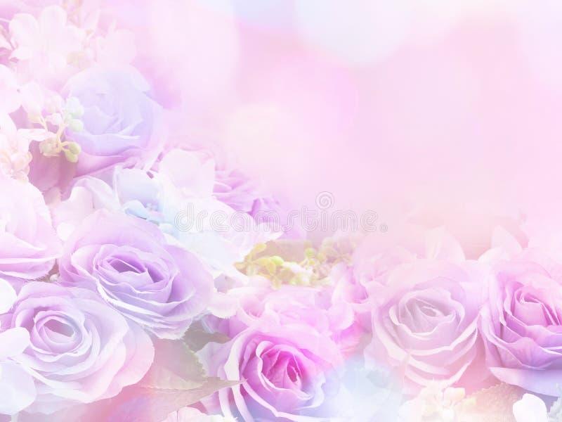 Rosa floresce o estilo macio com efeito do filtro do vintage imagens de stock