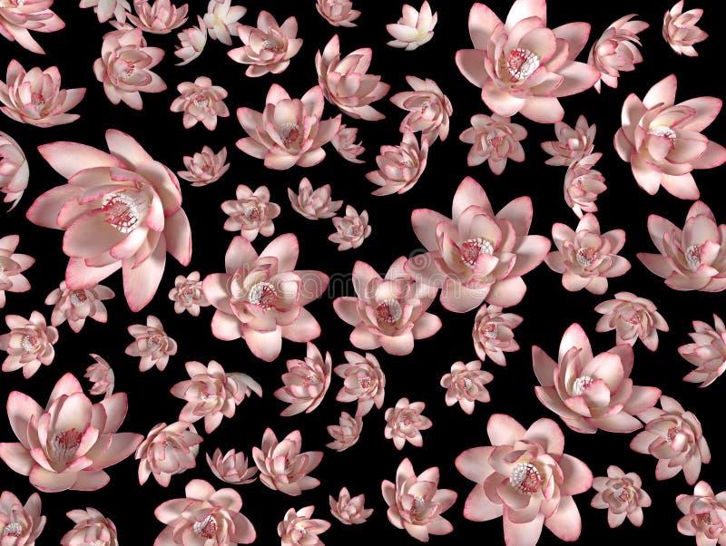 Rosa flygablommor på en svart bakgrund som en tapet royaltyfri illustrationer