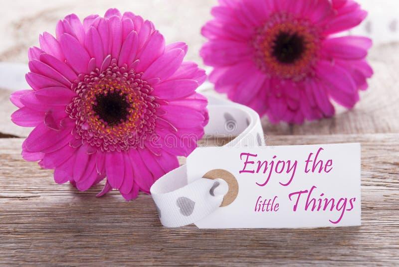Rosa Frühling Gerbera, Aufkleber, Zitat genießen die Kleinigkeiten stockfotografie