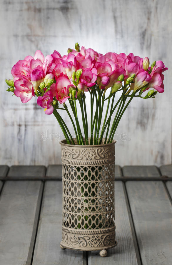 Rosa freesia blommar i tappning royaltyfria foton
