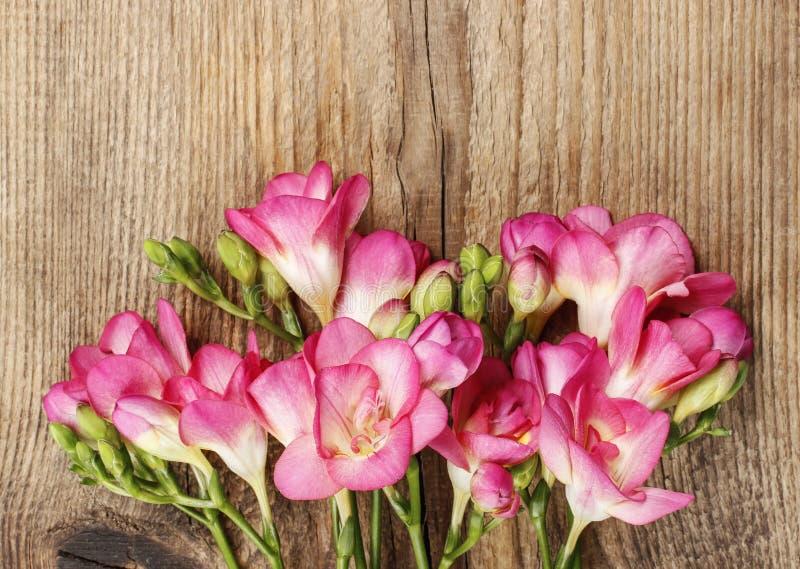 Rosa freesia blommar på trä royaltyfria bilder